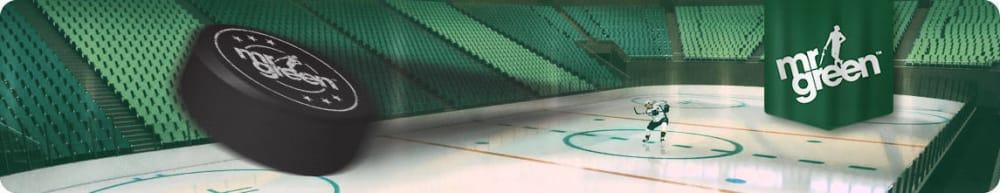 elite ice hockey league