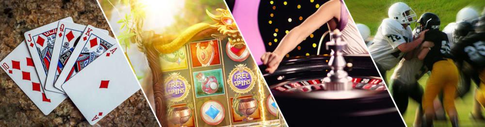 Microgaimg Casinosoftware